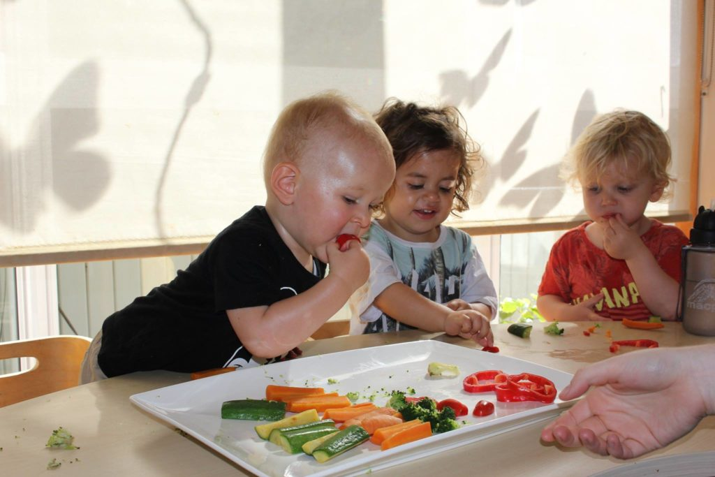 Early Life Nutrition2
